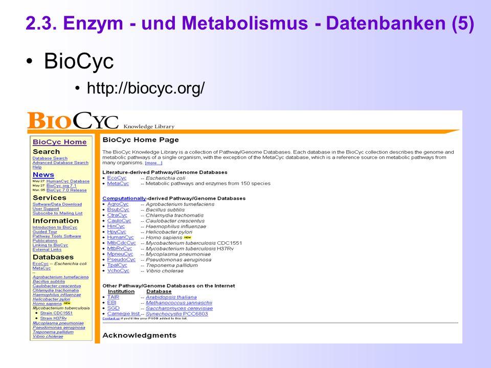 2.3. Enzym - und Metabolismus - Datenbanken (4) WIT ( What Is There ) http://www-unix.mcs.anl.gov/compbio/