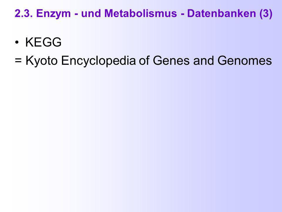 2.3. Enzym - und Metabolismus - Datenbanken (2) BRENDA