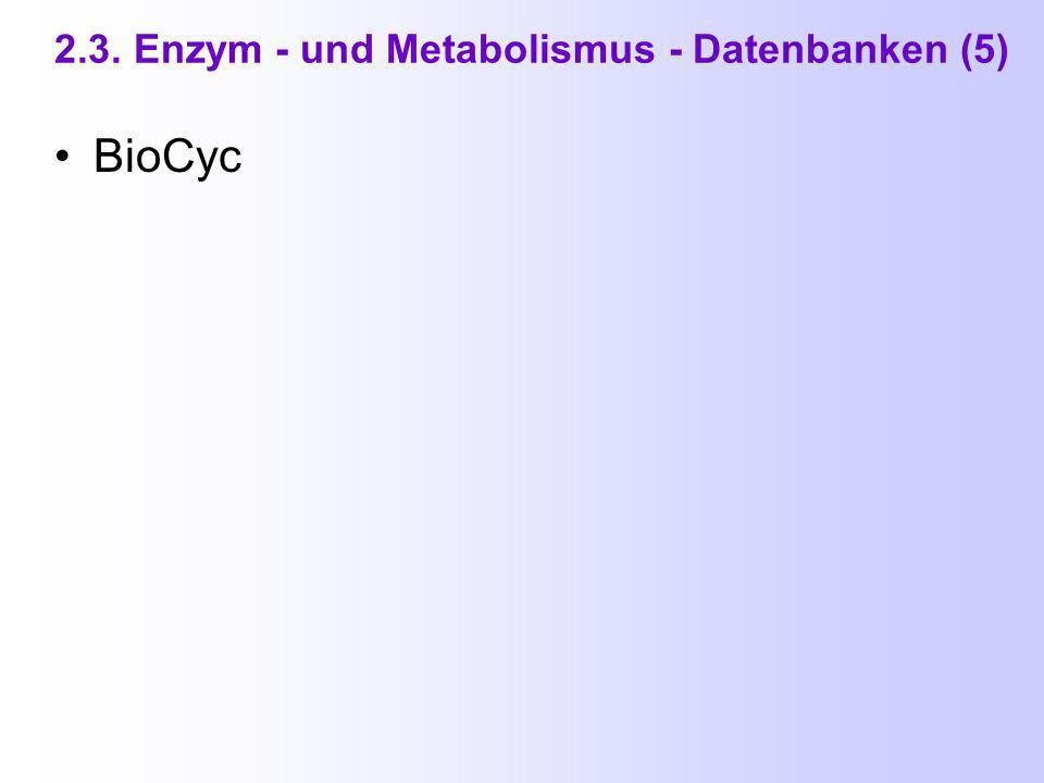 2.3. Enzym - und Metabolismus - Datenbanken (4) WIT