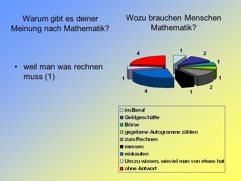 Wozu brauchen Menschen Mathematik? Warum gibt es deiner Meinung nach Mathematik? weil man was rechnen muss (1)