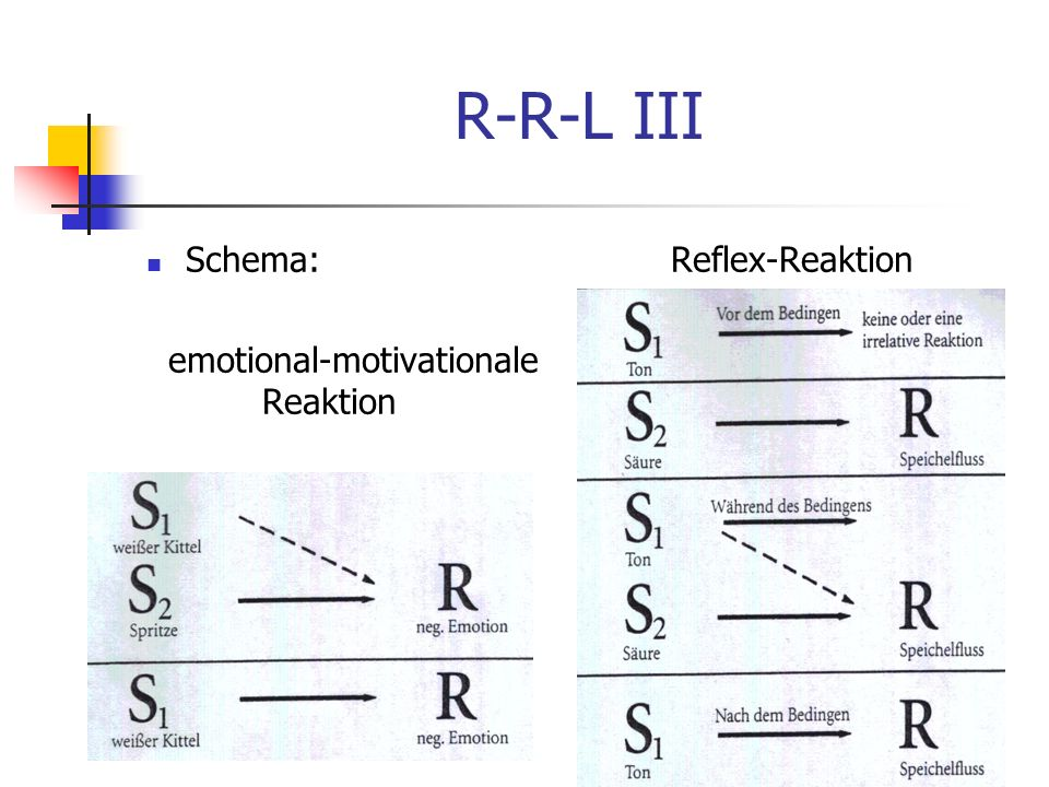 R-R-L III Schema: Reflex-Reaktion emotional-motivationale Reaktion