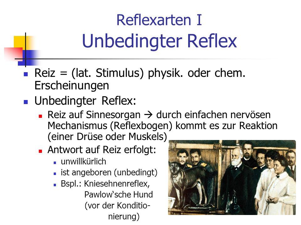 Reflexarten II Bedingter Reflex in zeitlichem Unterschied (Kontiguität) Darbietung von neutralem Reiz (Glockenton) mit unbedingtem Reiz (Säure), der die unbedingte Reaktion (Maulbewegung + Speichelfluss) auslöst Nach mehrmaliger Wiederholung der beiden Reize, wird unbedingter Reiz (Säure) durch neutralen Reiz (Glockenton) ersetzt (Reizsubstitution) es erfolgt trotzdem eine ähnliche Reaktion (Maulbewegung + Speichelfluss) Bedingter Reflex = Reiz-Reaktions-Verbindung