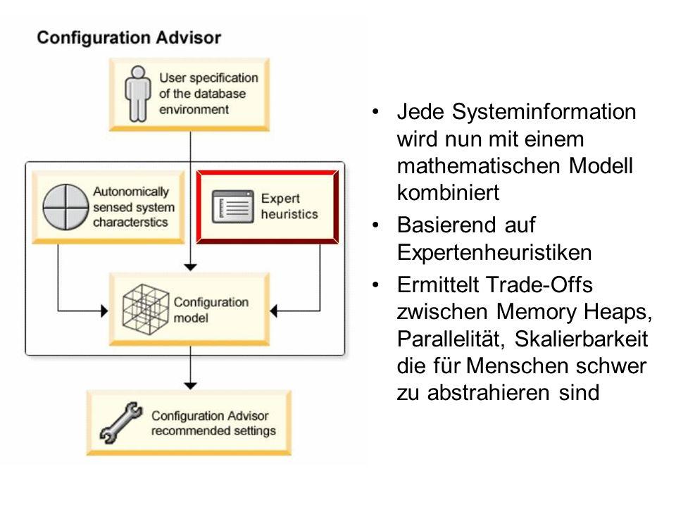 Jede Systeminformation wird nun mit einem mathematischen Modell kombiniert Basierend auf Expertenheuristiken Ermittelt Trade-Offs zwischen Memory Heaps, Parallelität, Skalierbarkeit die für Menschen schwer zu abstrahieren sind