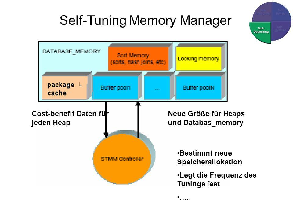 Cost-benefit Daten für jeden Heap Neue Größe für Heaps und Databas_memory Bestimmt neue Speicherallokation Legt die Frequenz des Tunings fest …..