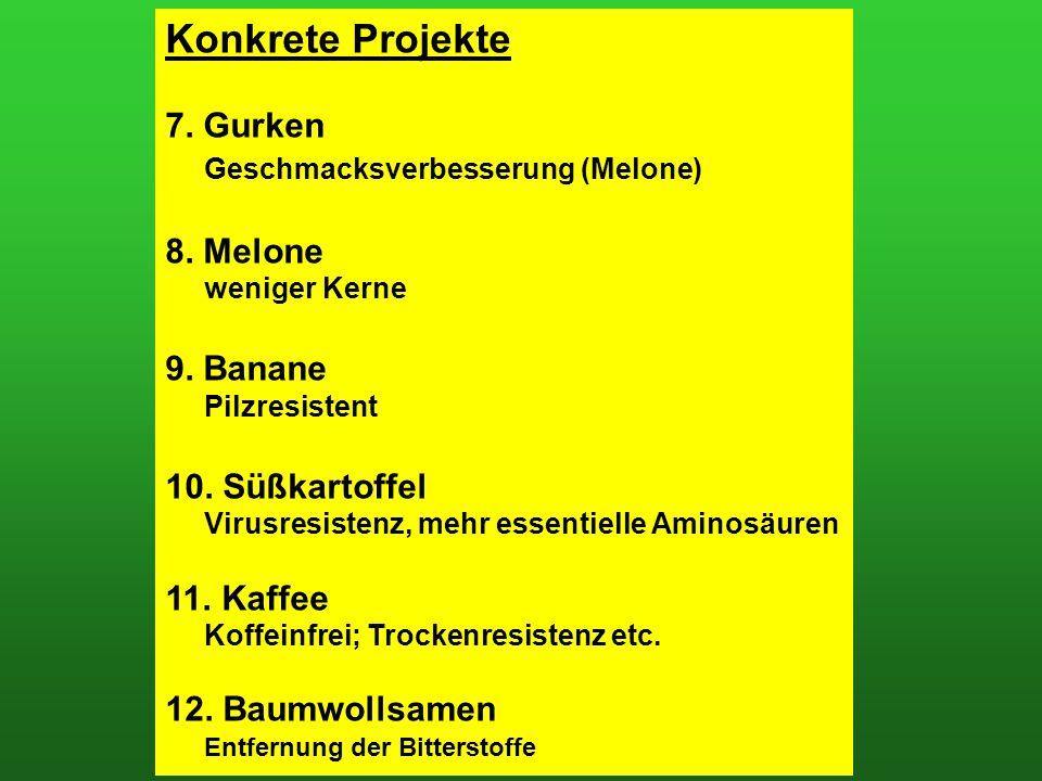 Konkrete Projekte 7. Gurken Geschmacksverbesserung (Melone) 8.