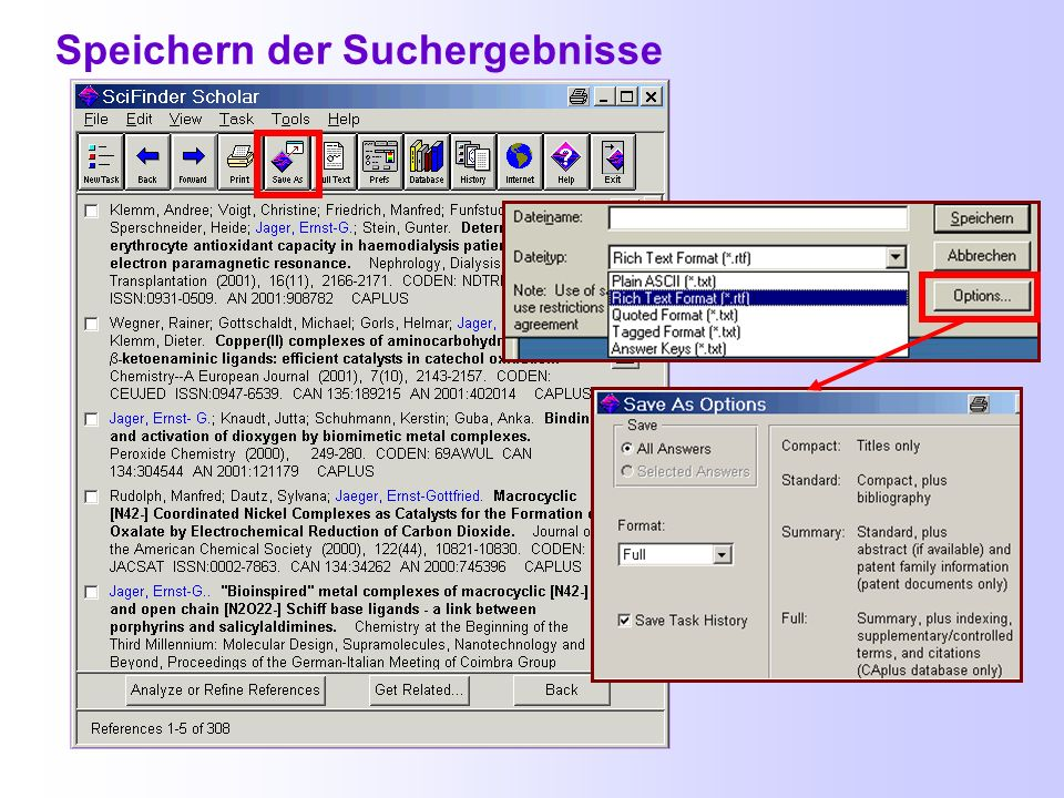 Beispiel eines Volltextes (PDF-Datei)