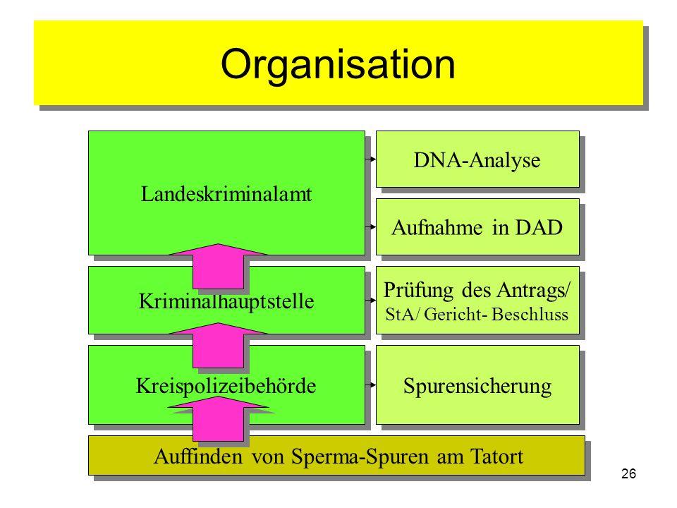 26 Organisation Auffinden von Sperma-Spuren am Tatort Kreispolizeibehörde Kriminalhauptstelle Landeskriminalamt Aufnahme in DAD Spurensicherung Prüfun
