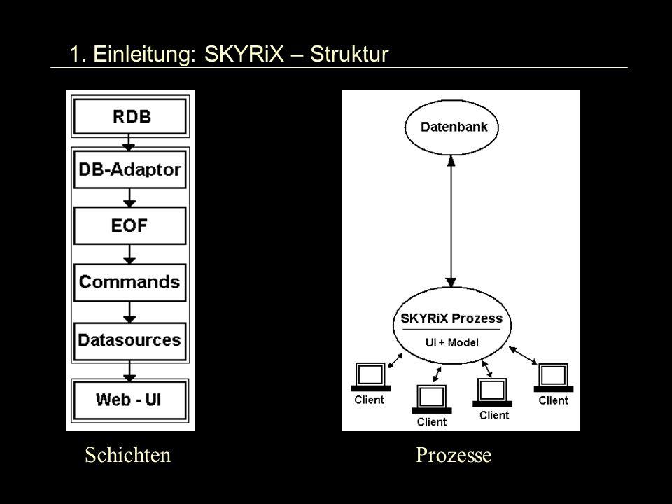 1. Einleitung: SKYRiX – Struktur SchichtenProzesse