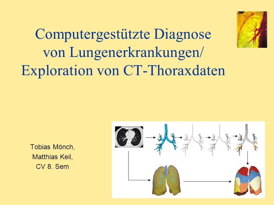 Computergestützte Diagnose von Lungenerkrankungen/ Exploration von CT-Thoraxdaten Tobias Mönch, Matthias Keil, CV 8. Sem