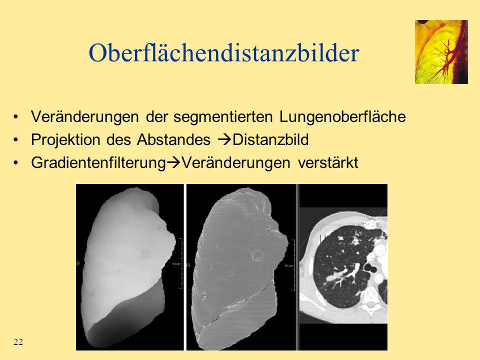 22 Oberflächendistanzbilder Veränderungen der segmentierten Lungenoberfläche Projektion des Abstandes Distanzbild Gradientenfilterung Veränderungen ve