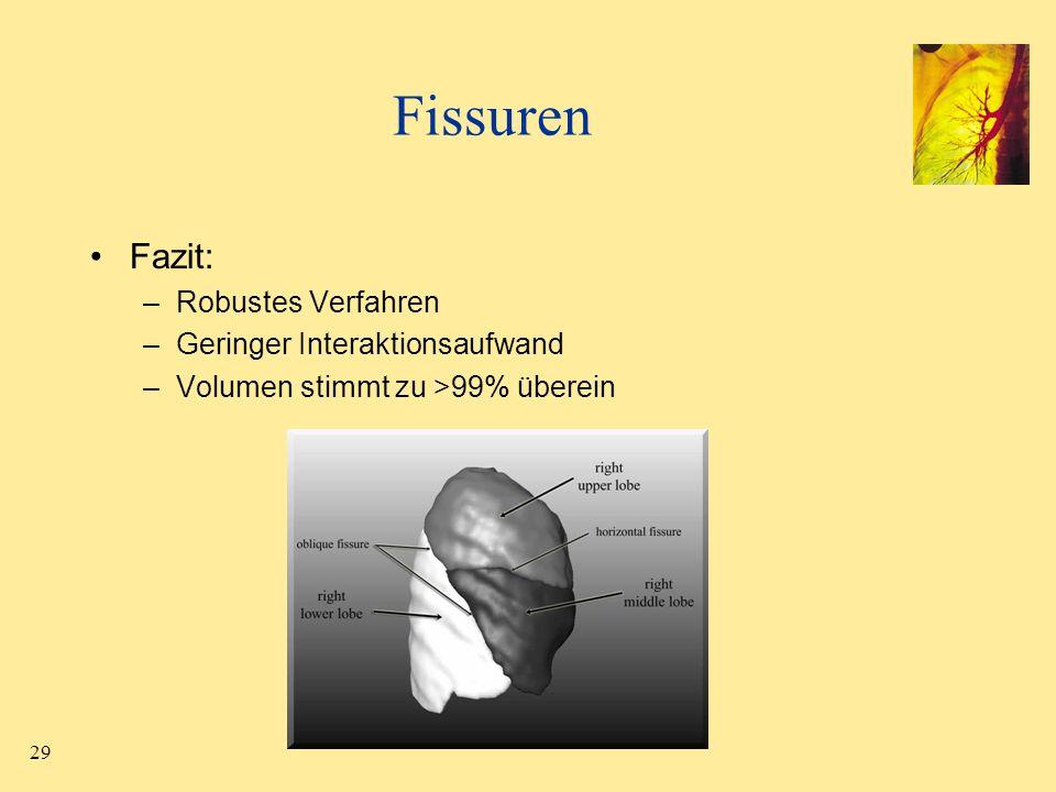 29 Fissuren Fazit: –Robustes Verfahren –Geringer Interaktionsaufwand –Volumen stimmt zu >99% überein