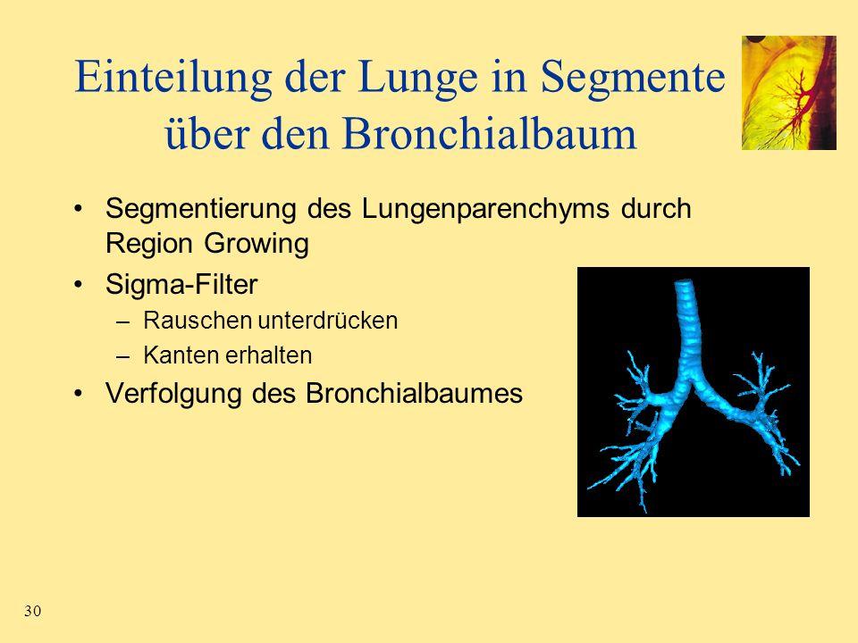 30 Einteilung der Lunge in Segmente über den Bronchialbaum Segmentierung des Lungenparenchyms durch Region Growing Sigma-Filter –Rauschen unterdrücken
