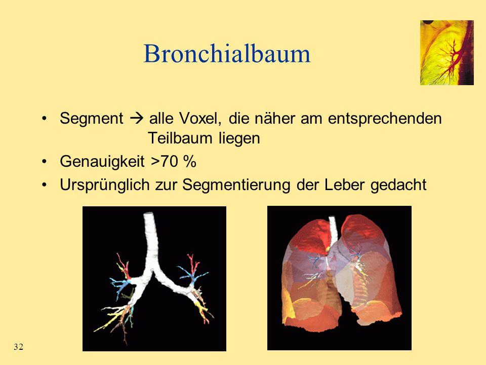 32 Bronchialbaum Segment alle Voxel, die näher am entsprechenden Teilbaum liegen Genauigkeit >70 % Ursprünglich zur Segmentierung der Leber gedacht
