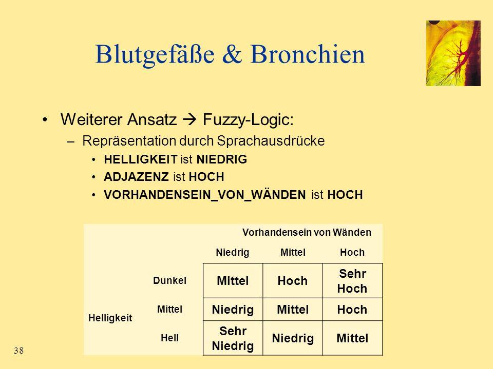 38 Blutgefäße & Bronchien Weiterer Ansatz Fuzzy-Logic: –Repräsentation durch Sprachausdrücke HELLIGKEIT ist NIEDRIG ADJAZENZ ist HOCH VORHANDENSEIN_VO