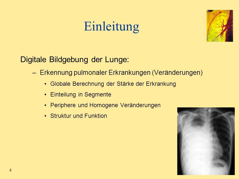 4 Einleitung Digitale Bildgebung der Lunge: –Erkennung pulmonaler Erkrankungen (Veränderungen) Globale Berechnung der Stärke der Erkrankung Einteilung