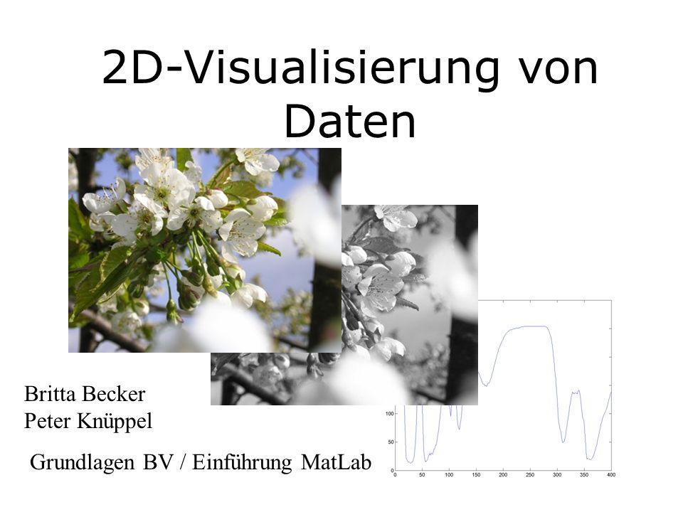 2D-Visualisierung von Daten Britta Becker Peter Knüppel Grundlagen BV / Einführung MatLab