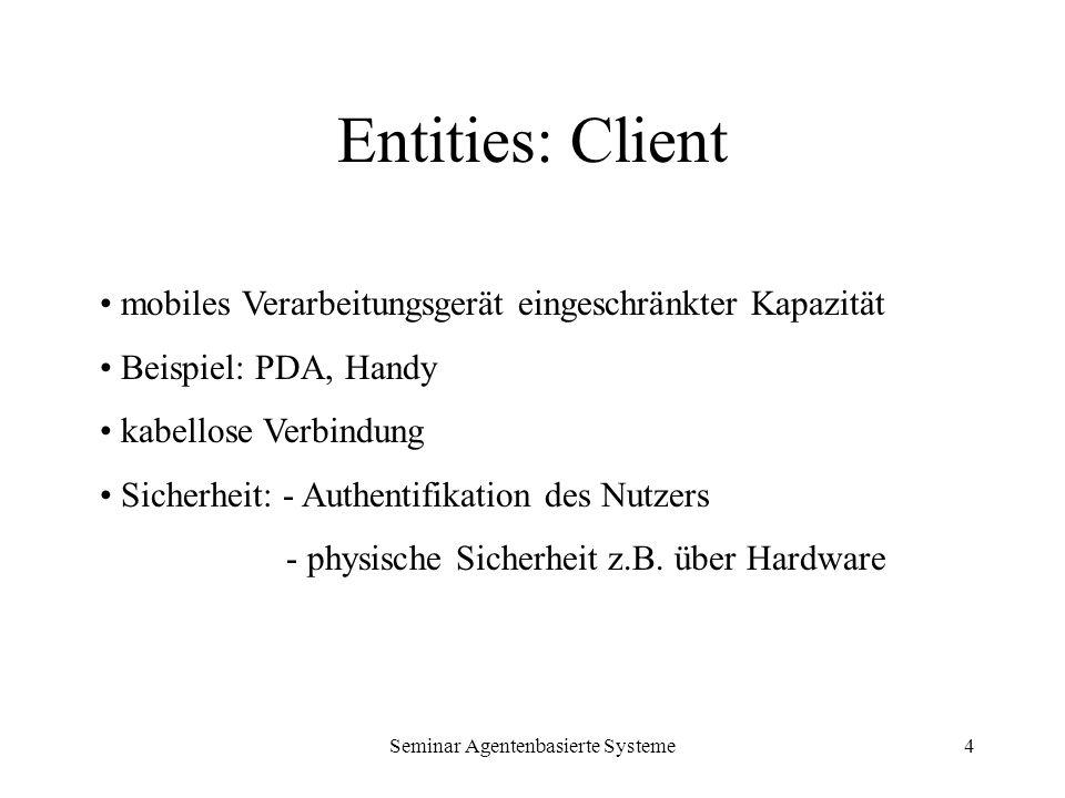 Seminar Agentenbasierte Systeme4 Entities: Client mobiles Verarbeitungsgerät eingeschränkter Kapazität Beispiel: PDA, Handy kabellose Verbindung Siche