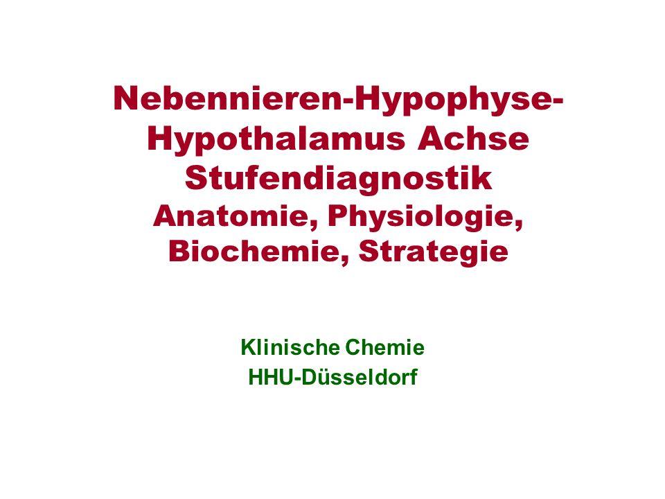 Nebennieren-Hypophyse- Hypothalamus Achse Stufendiagnostik Anatomie, Physiologie, Biochemie, Strategie Klinische Chemie HHU-Düsseldorf