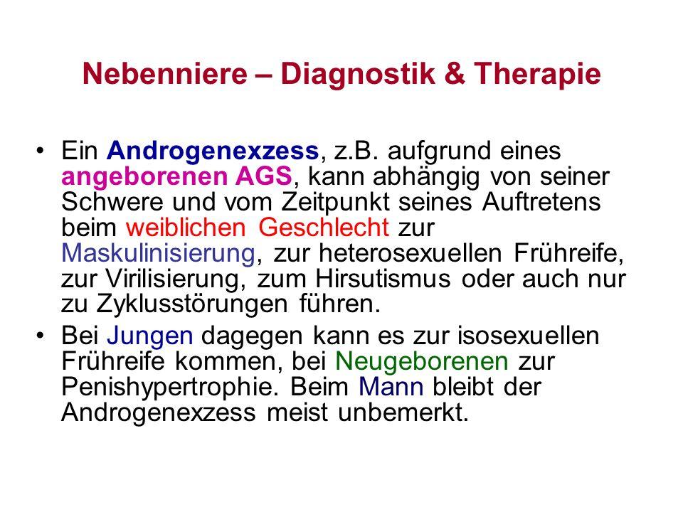 Nebenniere – Diagnostik & Therapie Ein Androgenexzess, z.B. aufgrund eines angeborenen AGS, kann abhängig von seiner Schwere und vom Zeitpunkt seines