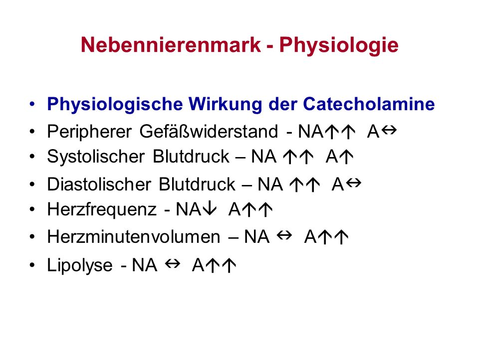 Nebennierenmark - Physiologie Physiologische Wirkung der Catecholamine Peripherer Gefäßwiderstand - NA A Systolischer Blutdruck – NA A Diastolischer B