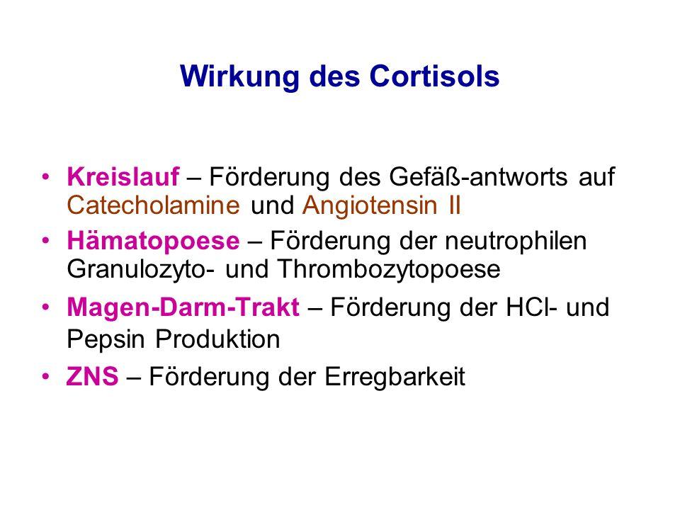 Wirkung des Cortisols Kreislauf – Förderung des Gefäß-antworts auf Catecholamine und Angiotensin II Hämatopoese – Förderung der neutrophilen Granulozy
