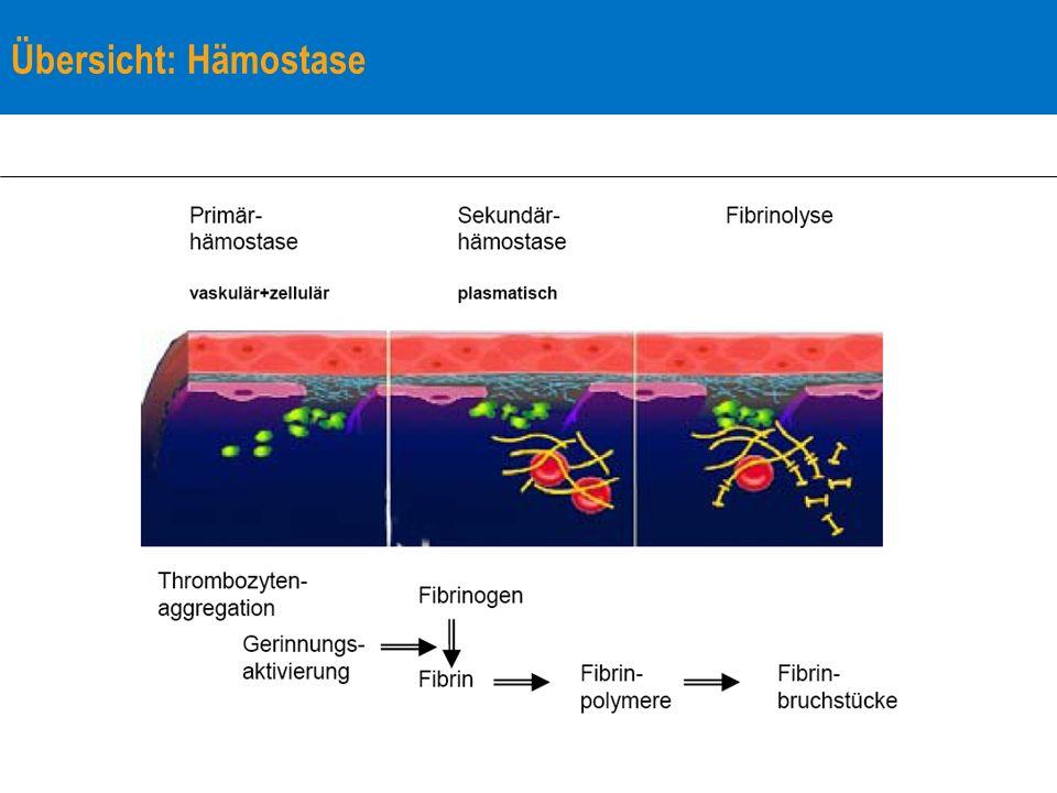 Diagnostik: Phasen-Test (Suchtests) der plasmatischen Gerinnung Thromboplastin-Zeit (TPZ, Quick-Wert) – exogenes System: speziell die Faktoren VII, X, V, II, I (aktivierte) partielle Thromboplastin-Zeit ((a)PTT) – endogenes und exogenes System: speziell Faktoren XII, XI, IX, VIII, X, V, II, I – Heparin Plasma-Thrombin-Zeit (PTZ) – Fibrinolyse – Heparin – Fibrinogen-Mangel
