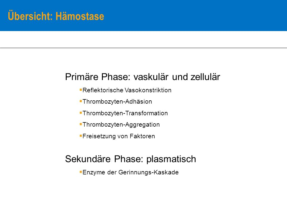 Primäre Phase: vaskulär und zellulär Reflektorische Vasokonstriktion Thrombozyten-Adhäsion Thrombozyten-Transformation Thrombozyten-Aggregation Freise