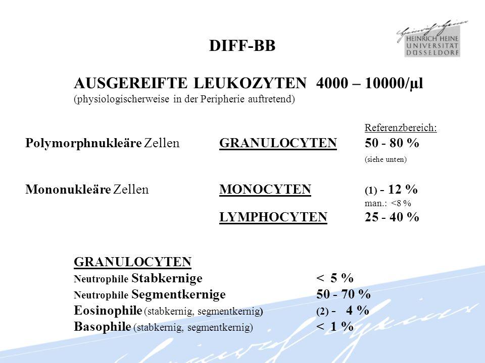 DIFF-BB AUSGEREIFTE LEUKOZYTEN4000 – 10000/µl (physiologischerweise in der Peripherie auftretend) Referenzbereich: Polymorphnukleäre ZellenGRANULOCYTE