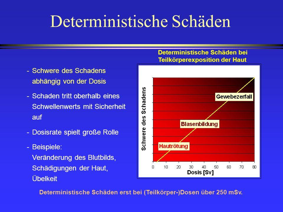 Deterministische Schäden -Schwere des Schadens abhängig von der Dosis -Schaden tritt oberhalb eines Schwellenwerts mit Sicherheit auf -Dosisrate spiel