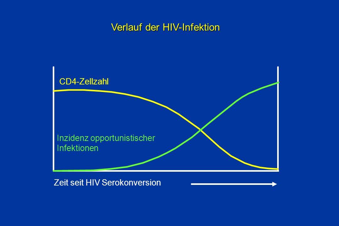 Zeit seit HIV Serokonversion CD4-Zellzahl Inzidenz opportunistischer Infektionen Verlauf der HIV-Infektion