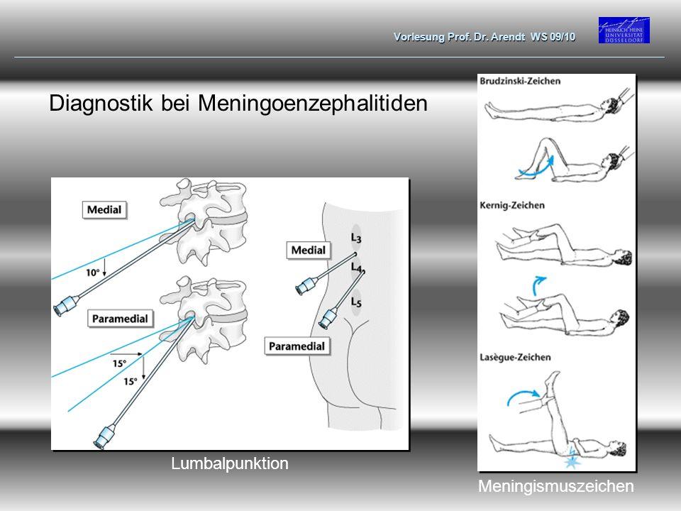 Vorlesung Prof. Dr. Arendt WS 09/10 Diagnostik bei Meningoenzephalitiden Lumbalpunktion Meningismuszeichen