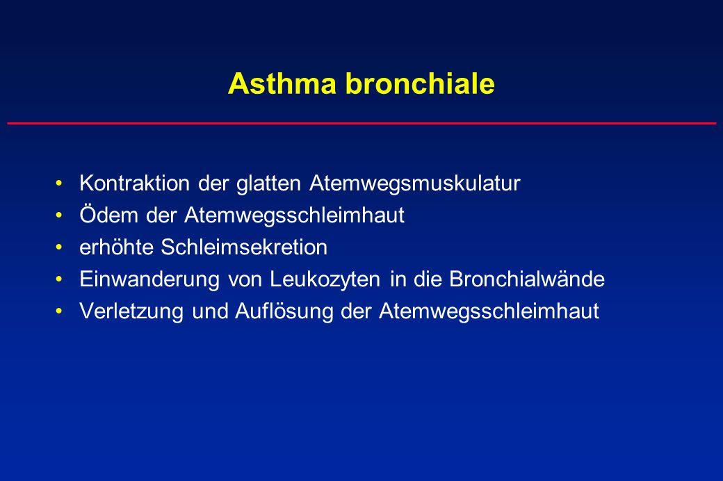 Kontraktion der glatten Atemwegsmuskulatur Ödem der Atemwegsschleimhaut erhöhte Schleimsekretion Einwanderung von Leukozyten in die Bronchialwände Ver