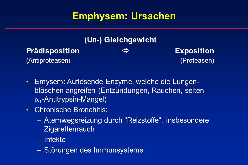 Emphysem: Ursachen (Un-) Gleichgewicht Prädisposition Exposition (Antiproteasen)(Proteasen) Emysem: Auflösende Enzyme, welche die Lungen- bläschen ang