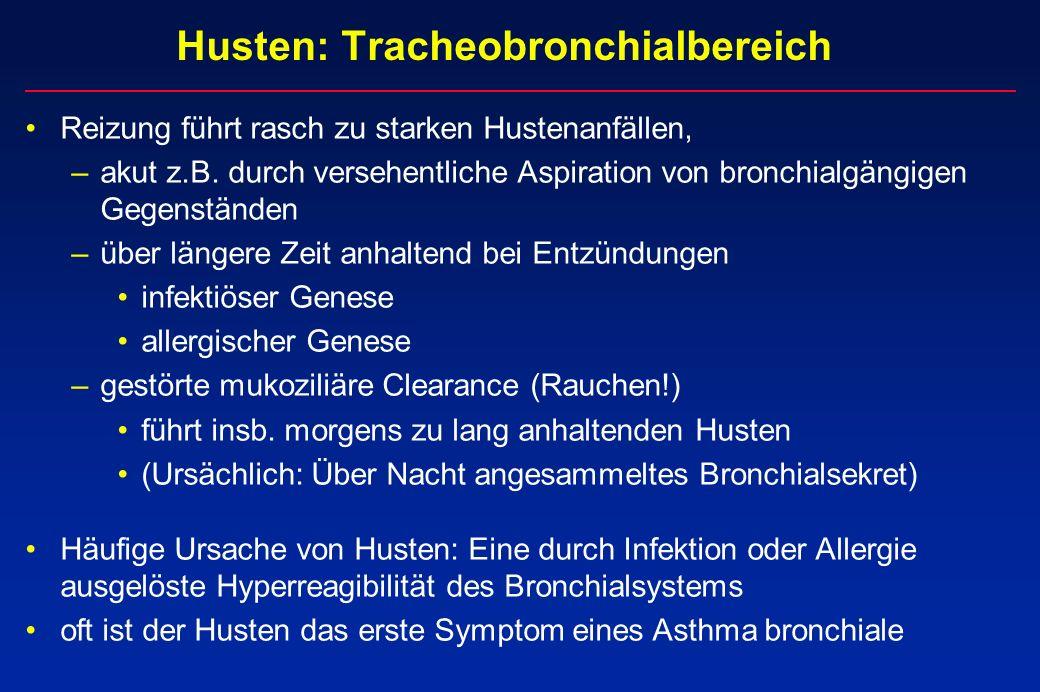 Husten: Tracheobronchialbereich Reizung führt rasch zu starken Hustenanfällen, –akut z.B. durch versehentliche Aspiration von bronchialgängigen Gegens