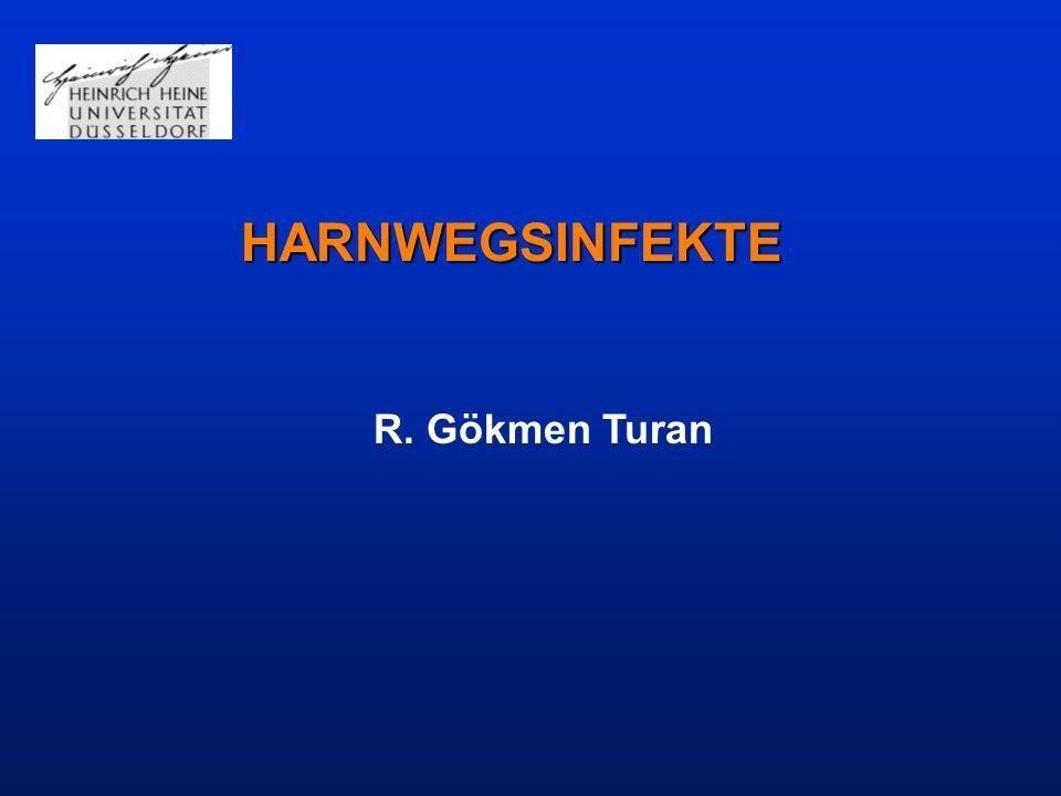 Der Begriff Harnwegsinfektion (HWI) umfasst akute und chronische Entzündungsprozesse im Bereich der ableitenden Harnwege und/oder der Niere.