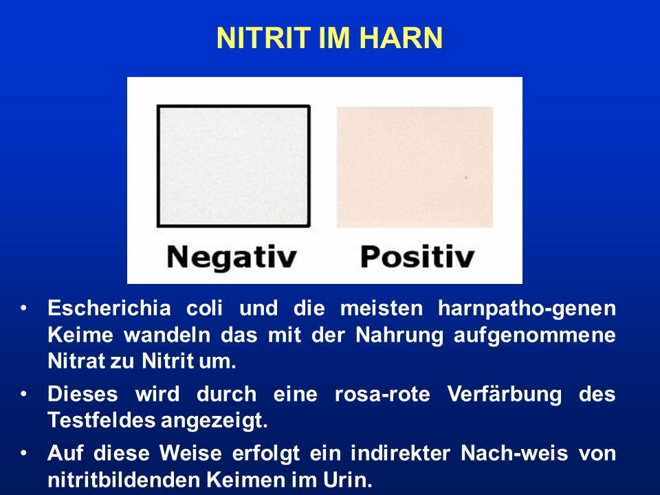 NITRIT IM HARN Escherichia coli und die meisten harnpatho-genen Keime wandeln das mit der Nahrung aufgenommene Nitrat zu Nitrit um. Dieses wird durch