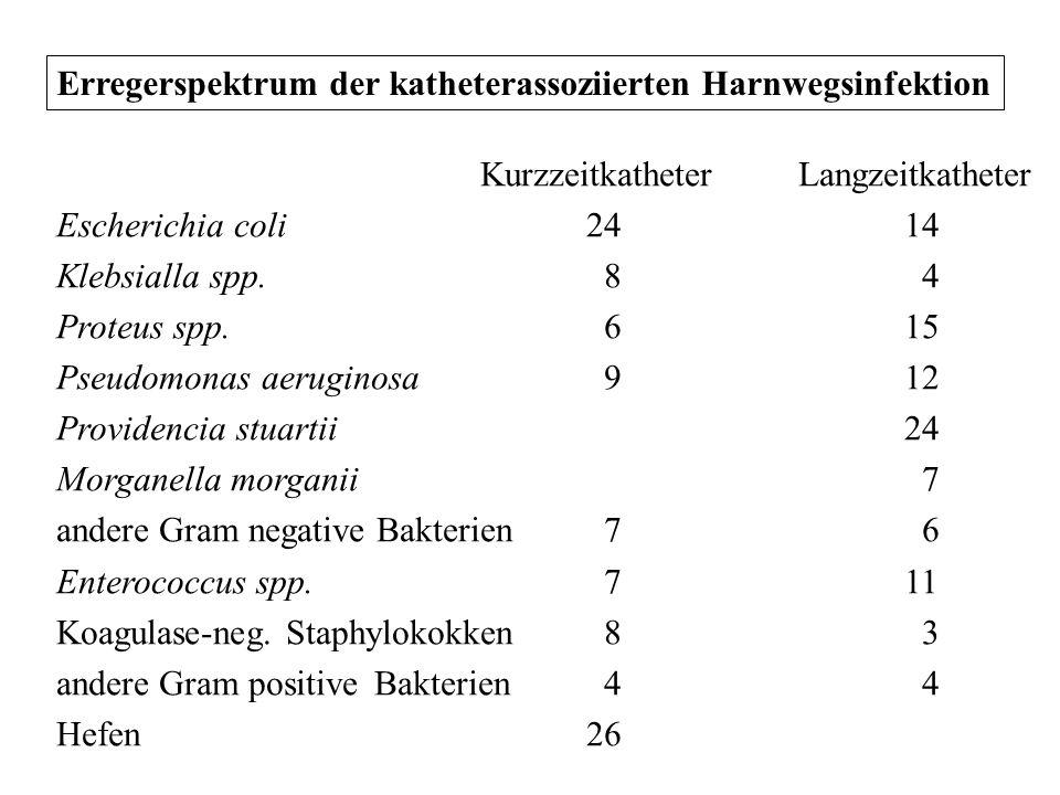 Erregerspektrum der katheterassoziierten Harnwegsinfektion KurzzeitkatheterLangzeitkatheter Escherichia coli2414 Klebsialla spp. 8 4 Proteus spp. 615