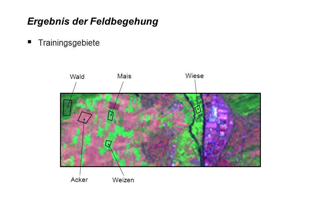 Bedingung: spektral homogene Flächen ansonsten neue Klasse (gleiche Farbe) einführen (Bsp.: Weizen1, Weizen2, …) Digitalisierung der Trainingsgebiete
