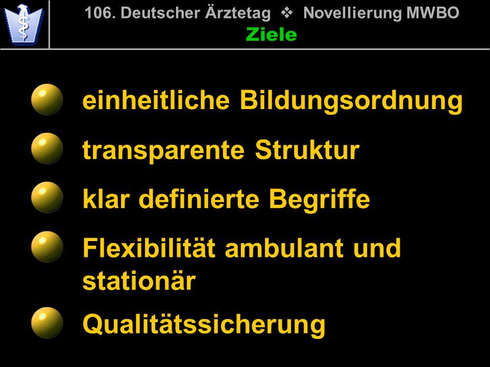 Ziele einheitliche Bildungsordnung transparente Struktur klar definierte Begriffe Flexibilität ambulant und stationär Qualitätssicherung 106. Deutsche