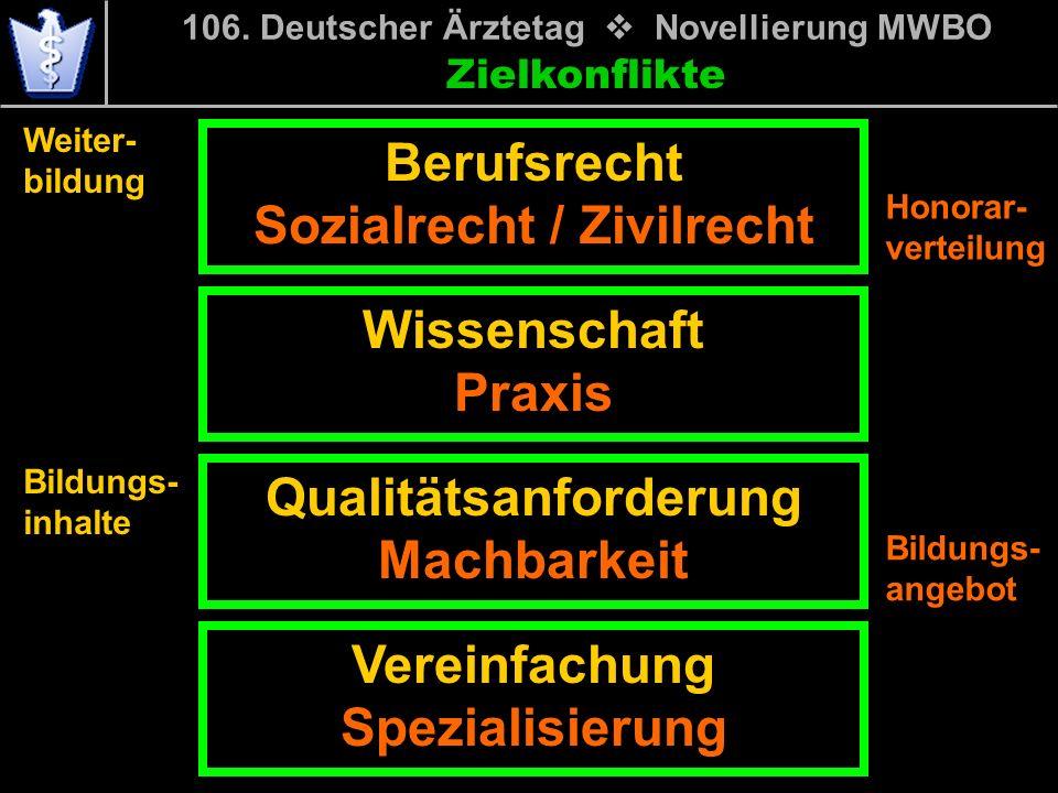 Zielkonflikte Berufsrecht Sozialrecht / Zivilrecht 106.