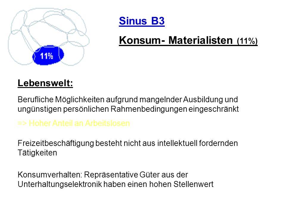 Sinus B3 Konsum- Materialisten (11%) Lebenswelt: Berufliche Möglichkeiten aufgrund mangelnder Ausbildung und ungünstigen persönlichen Rahmenbedingunge