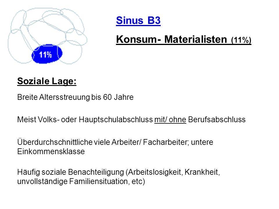 Sinus B3 Konsum- Materialisten (11%) Soziale Lage: Breite Altersstreuung bis 60 Jahre Meist Volks- oder Hauptschulabschluss mit/ ohne Berufsabschluss