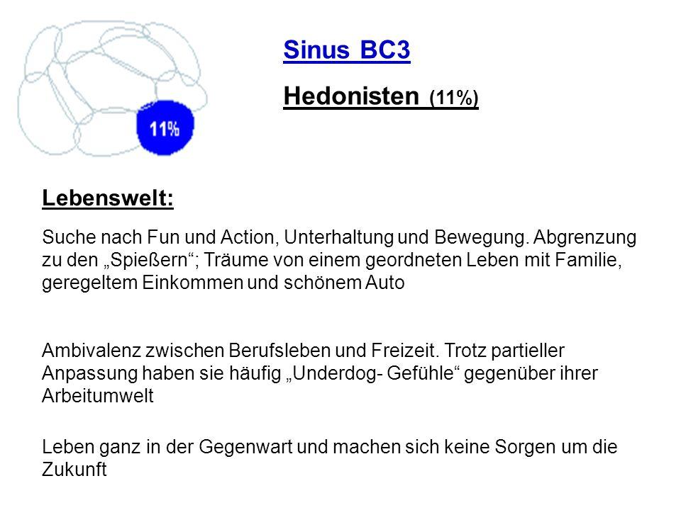 Sinus BC3 Hedonisten (11%) Suche nach Fun und Action, Unterhaltung und Bewegung. Abgrenzung zu den Spießern; Träume von einem geordneten Leben mit Fam