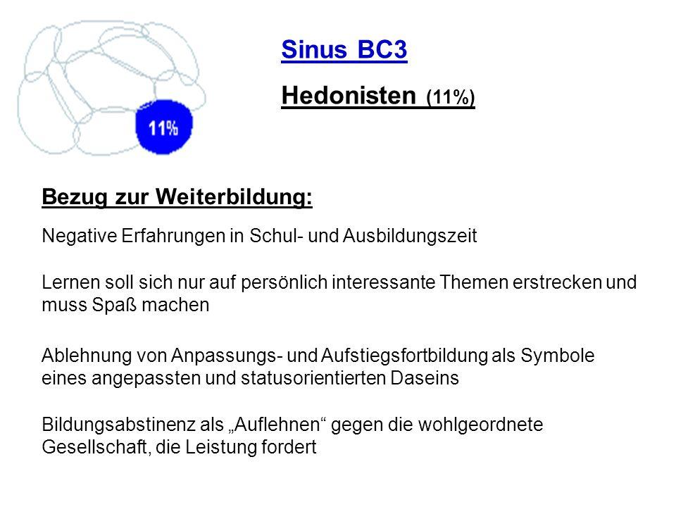 Sinus C2 Experimentalisten (7%) Die individualistische Bohème: Ungehinderte Spontaneität, Leben in Widersprüchen, Selbstverständnis als Lifestyle- Avantgarde