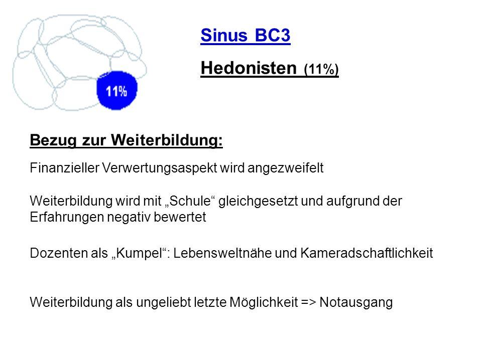 Sinus BC3 Hedonisten (11%) Bezug zur Weiterbildung: Finanzieller Verwertungsaspekt wird angezweifelt Weiterbildung wird mit Schule gleichgesetzt und a