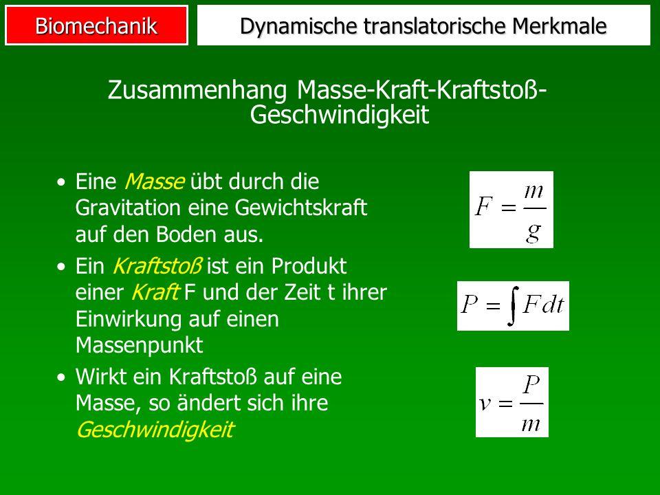 Biomechanik Dynamische translatorische Merkmale Eine Masse übt durch die Gravitation eine Gewichtskraft auf den Boden aus. Ein Kraftstoß ist ein Produ
