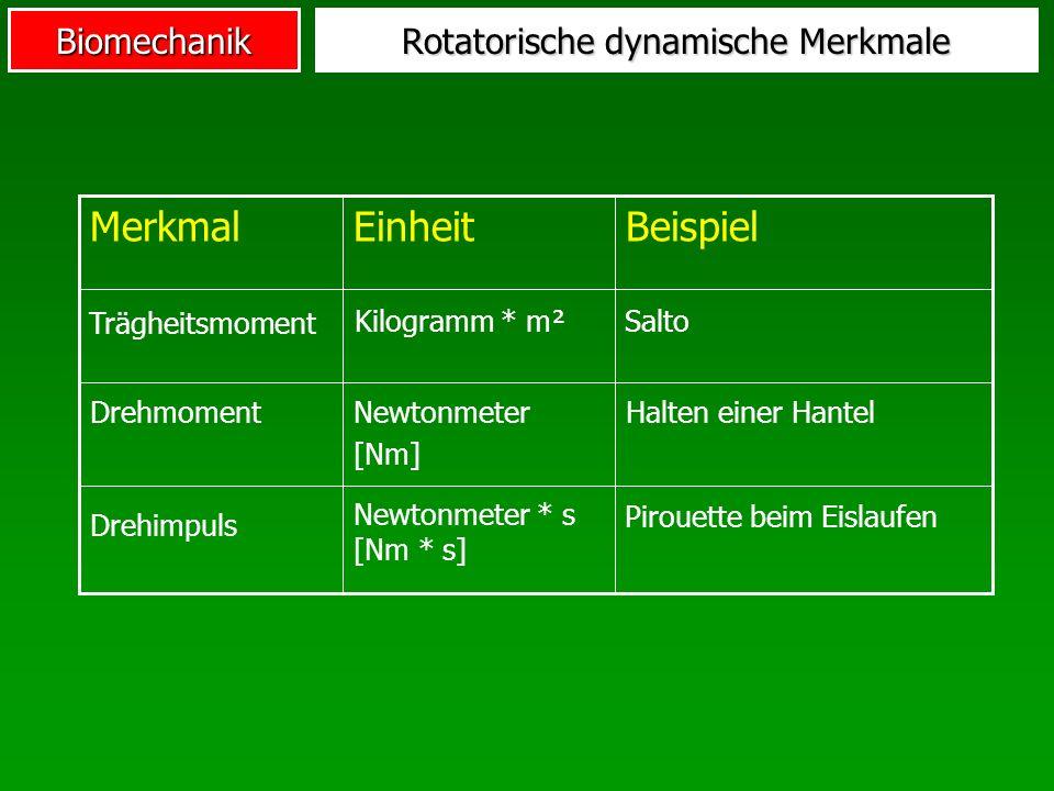 Biomechanik Rotatorische dynamische Merkmale Halten einer HantelNewtonmeter [Nm] Drehmoment BeispielEinheitMerkmal Drehimpuls Trägheitsmoment Kilogram