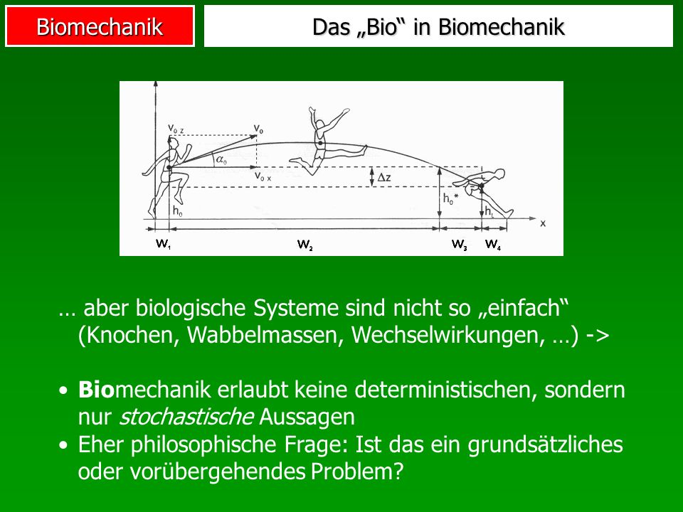 Biomechanik Das Bio in Biomechanik … aber biologische Systeme sind nicht so einfach (Knochen, Wabbelmassen, Wechselwirkungen, …) -> Biomechanik erlaub