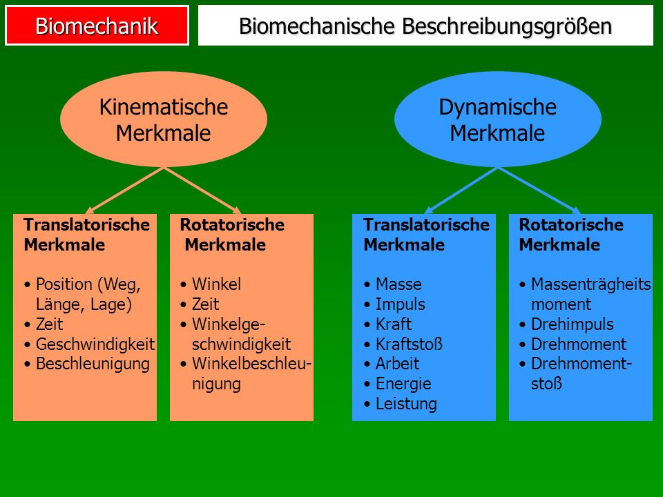Biomechanik Rotatorische dynamische Merkmale Halten einer HantelNewtonmeter [Nm] Drehmoment BeispielEinheitMerkmal Drehimpuls Trägheitsmoment Kilogramm * m²Salto Pirouette beim Eislaufen Newtonmeter * s [Nm * s]