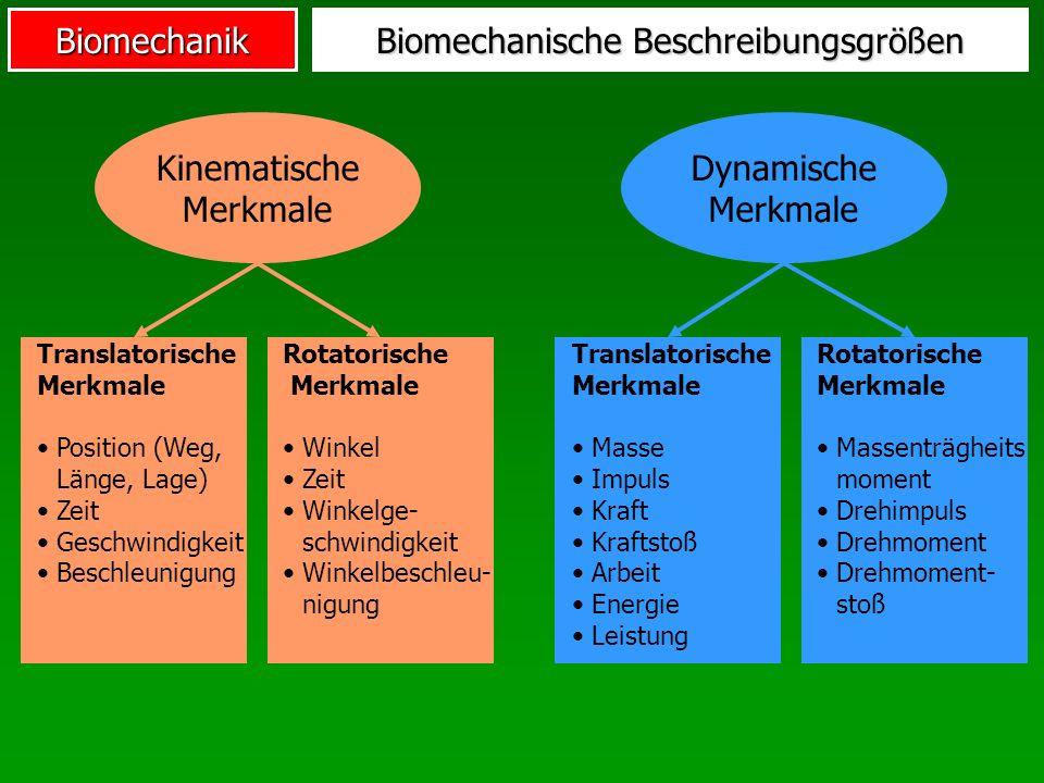 Biomechanik Winkel (Golf) Verwringung Oberkörper (quantitativ)